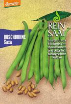 Buschbohne 'Saxa' (Bio-Saatgut, AT-BIO-301)