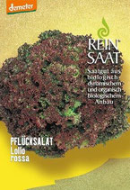 Pflücksalat 'Lollo Rossa' (Bio-Saatgut)