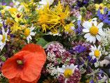 Blumenmischung 'Feldblumen' (Bio-Saatgut, AT-BIO-301)