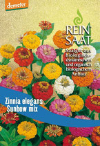 Zinnie 'Sunbow Mix' (Bio-Saatgut, AT-BIO-301)