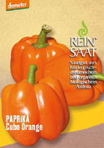 Paprika 'Cubo Orange' (Bio-Saatgut, AT-BIO-301)