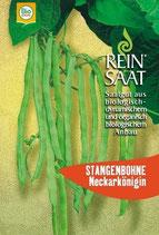 Stangenbohne 'Neckarkönigin' (Bio-Saatgut, AT-BIO-301)