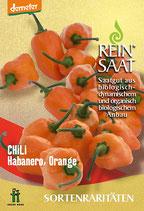 Chili 'Habanero Orange' (Bio-Saatgut, AT-BIO-301)
