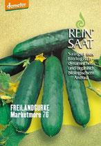 Salatgurke 'Marketmore 76' (Bio-Saatgut)