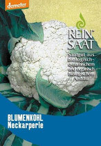 Blumenkohl 'Neckarperle' (Bio-Saatgut, AT-BIO-301)