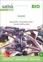 Rosenkohl 'Rubine' (Bio-Saatgut, CH-BIO-006)