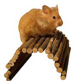 Käfigzubehör/Behausung Hamster