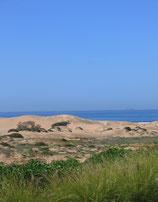 Dunes & Water