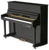 """PianoDisc PD 19T NUOVO  """"preparato"""" 119cm"""