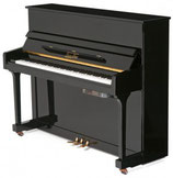 "PianoDisc PD 19T SILENT GT 2 mini NUOVO  ""preparato"" 119cm"