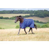 SHIRES - Tempest 100 - BASIC - stand.-