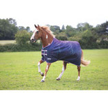 SHIRES - Tempest 100 - LIMITED EDITION - BASIC -