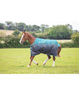 SHIRES - Tempest 200 - LIMITED EDITION - BASIC -