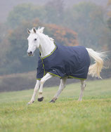 SHIRES - Tempest 200 - BASIC - stand.