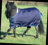 SHIRES - Tempest 200 - BASIC - stand .- SALE