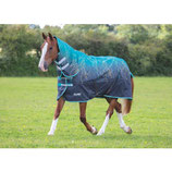 SHIRES - Tempest 200 - COMBO - LIMITED EDITION - BASIC -