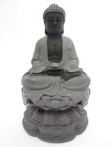 Thaise Boeddha op lotus