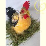 Set van kleine kip en grasmatje