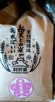 木の花米 玄米・白米・5分つき米