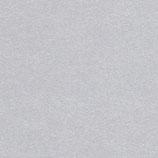 Cartoncino Dust Argento