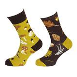 One Sock Style - Herbstblätter