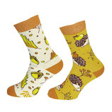 Igel, sonniger Herbst - One Sock Style