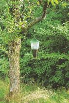 Insektenfalle Flycage