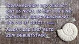 """Flaschenpost Schnecke """"VERGANGENHEIT UND DIE ZUKUNFT..."""""""