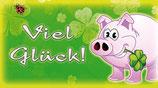 Flaschenpost Schweinchen ''Viel Glück''