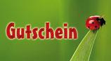 Flaschenpost Gutschein Käfer