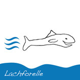 Lachforelle AC10