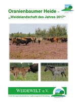 Weidelandschaft des Jahres 2017: Oranienbaumer Heide