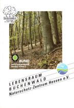 Biotop des Jahres 1995: Lebensraum Buchenwald