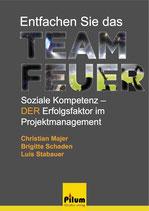 ENTFACHEN SIE DAS TEAMFEUER - Dr. Christian Majer, Mag. Brigitte Schaden, Luis Stabauer, Sachbuch, 292 Seiten, Softcover