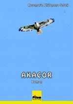 Akacor - Roman von Rosemarie Philomena Sebek, 400 Seiten, Hardcover
