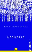 SZENARIO, Roman von Etela Farkasova, Hardcover, 392 Seiten