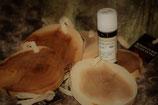 Rondin de Cade (5 pièces) avec huile