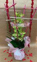 Bouquet bulle hauteur ROMANTIQUE