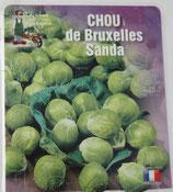 Chou de Bruxelles