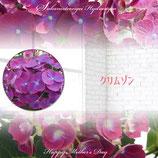 さかもと園芸のあじさい クリムゾン 5号鉢