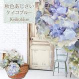 さかもと園芸のアンティークあじさい KEIKO 5号鉢
