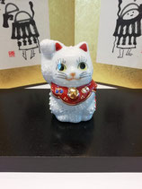 No.5 豆ねこ白盛(2号)