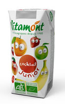 COCKTAIL DE FRUITS 20cl