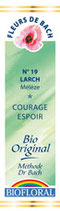 N°19 LARCH MELEZE 20ml