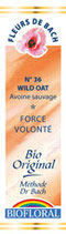 N°36 WILD OAT FOLLE AVOINE 20ml