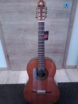 fun-gitarre 7/8 & 3/4