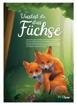 """Poster """"Füchse"""""""