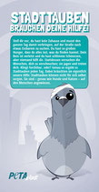 Flyer - Die Wahrheit über Stadttauben