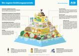 PETA Poster - Die Vegane Ernährungspyramide