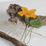 Kürbisblüte mit Blatt